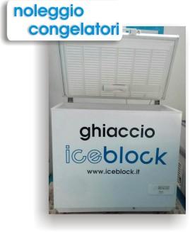 noleggio congelatori